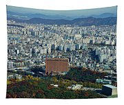 Aerial View Of Seoul South Korea Tapestry