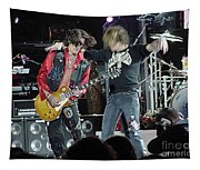 Aerosmith - Joe Perry -dsc00182-2-1 Tapestry