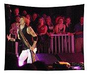 Aerosmith-steven Tyler-00074 Tapestry