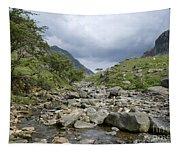 Afon Nant Peris Tapestry