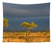 African Acacia Sunrise Tapestry