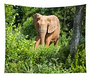 African Elephant Coming Through Trees Tapestry