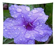 After The Rain #1 Tapestry