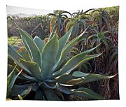 Agave At Sunset Tapestry