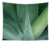 Agave No 1 Tapestry