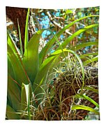 Air Plants 1 Tapestry
