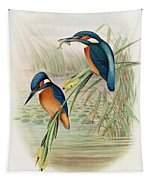Alcedo Ispida Plate From The Birds Of Great Britain By John Gould Tapestry