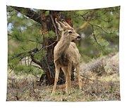 Alert In The Rockies Tapestry
