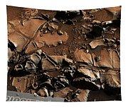 Alexander Hills Bedrock In Mars Tapestry