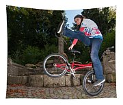 Alive And Kicking - Bmx Flatland Power Girl Tapestry