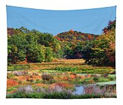 Allamuchy Mountains Autumn Tapestry