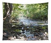 Allen Creek Tapestry