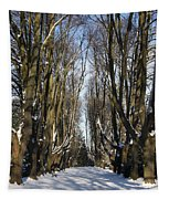 Alley In The Snow Tapestry