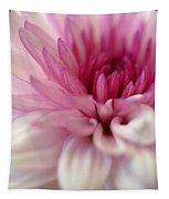 Alluring Tapestry