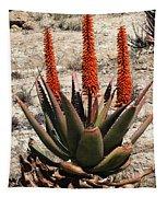 Aloe Vera At The Arboretum Tapestry