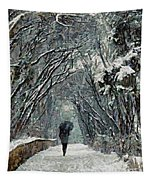 Alone In The  Winter Tapestry