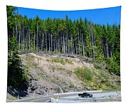 Along The Roadway Tapestry