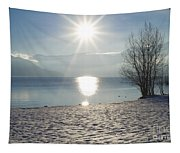 Alpine Lake With Snow Tapestry