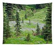 Alpine Meadow Tapestry