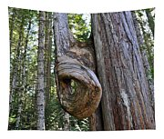 Altered Tree Trunk Growth Tapestry