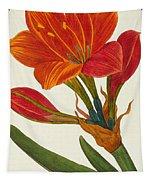 Amaryllis Purpurea Tapestry