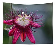Amazing Passion Flower Tapestry