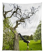 Amazing Stretching Exercise - Bmx Flatland Rider Monika Hinz Uses A Tree Tapestry
