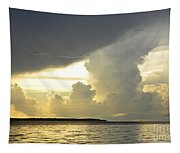 Amazon River Landscape Tapestry