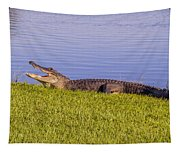 American Alligator Tapestry
