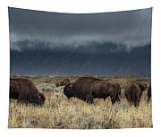 American Bison On The Prairie Tapestry