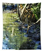 American Bittern - Keeping A Low Profile Tapestry