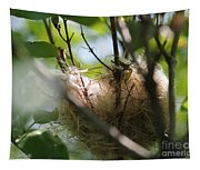 American Goldfinch Nest Under Construction Tapestry