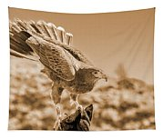 American Red Tail Hawk Tapestry