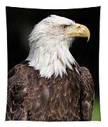 American Symbol Tapestry