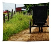 Amish Buggy On Dirt Road Tapestry