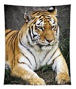Amur Tiger Tapestry