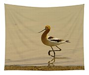 An Avocet Wading The Shore Tapestry