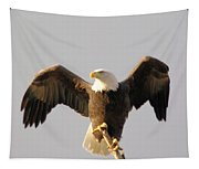 An Eagle Posing  Tapestry