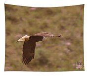 An Eagle Turns  Tapestry