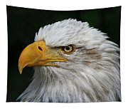 An Eagle's Portrait Tapestry