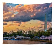 An Evening In Dc Tapestry