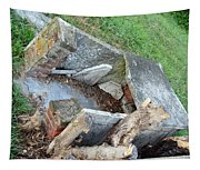 An Open Grave's Rubble Tapestry