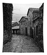 Ancient Street In Tui Bw Tapestry
