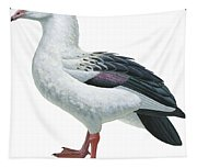 Andean Goose Tapestry