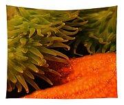 Anenome And Starfish Tapestry
