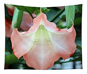 Angels Trumpet  Tapestry