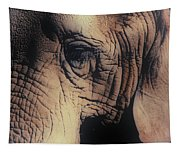 Animals Wrinkle Too Tapestry
