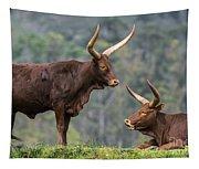 Ankole Longhorn 2 Tapestry