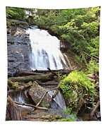 Anna Ruby Falls - Georgia - 4 Tapestry