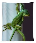 Anole Lovers Tapestry